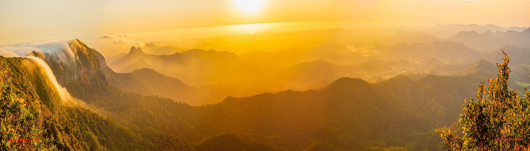 Sunrise On The Dorrigo Plateau 70 x 20