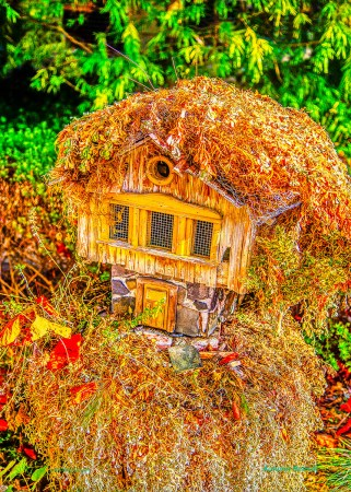 Autum-Retreat7