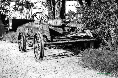 Horseless-Carriage-BW26